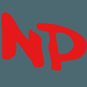 N. P. & Company, Inc.